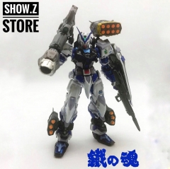 Valkyrie Factory MB 1/100 Gundam Seed Astray Blue Frame